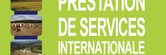 Prestation de service internationale